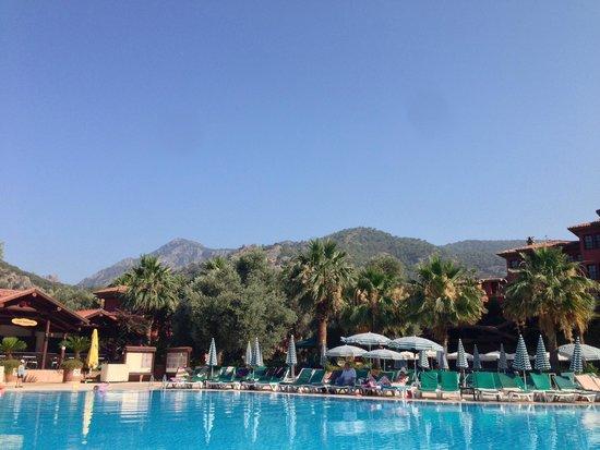 Suncity Hotel & Beach Club : pool area