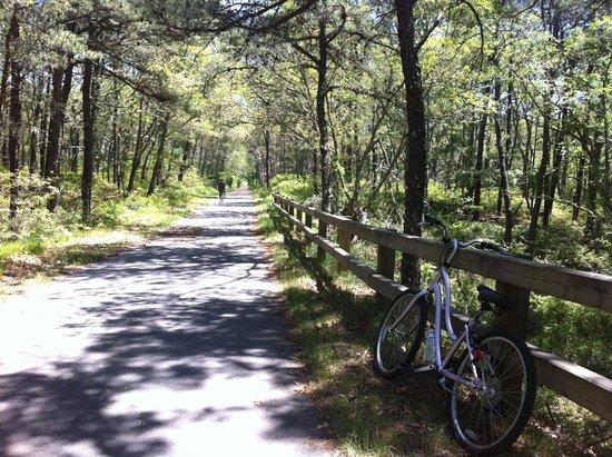 Cape Cod Rail Trail: início da trilha
