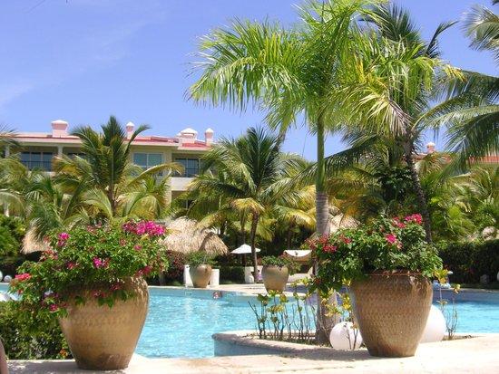 The Reserve at Paradisus Punta Cana : Vue de notre chaise longue