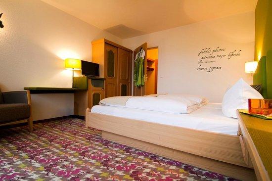 Hotel Bannwaldsee: Standard-Doppelzimmer