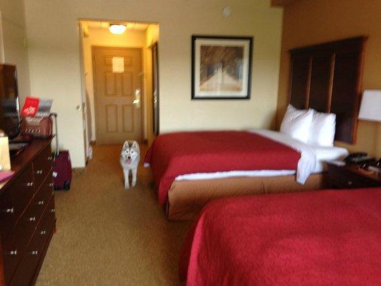 Country Inn & Suites by Radisson, Anderson, SC: за размещение с животными 25$