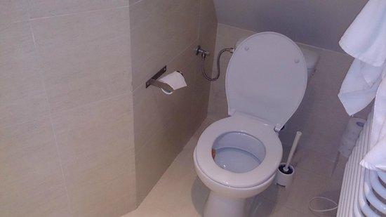 Villa Stratus : Toaleta