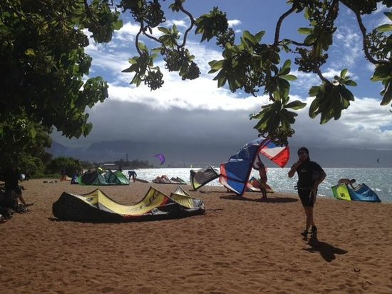 Action Sports Maui: At the beach in Kahului
