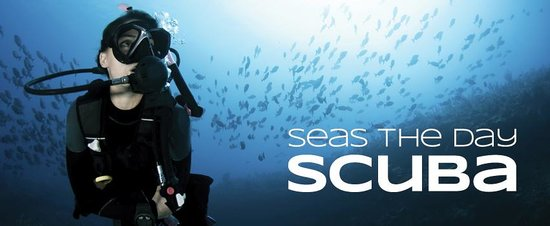 Seas the Day Scuba
