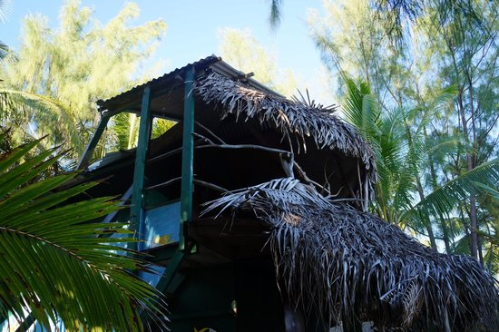 Matriki Beach Huts: Treehut