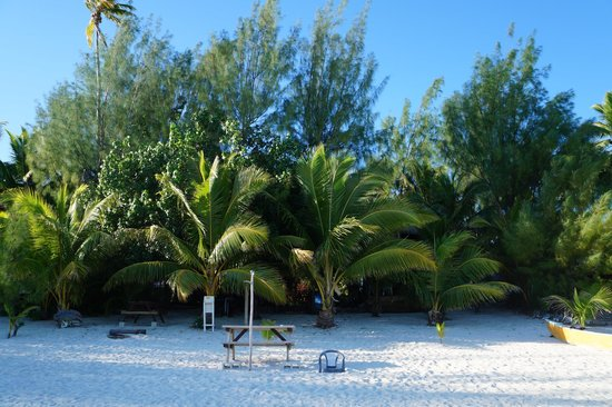 Matriki Beach Huts : Beach and communal areas