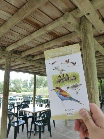 """Le Parc Ornithologique de Pont de Gau : Un guide complet très bien illustré est disponible à la """"buvette"""""""
