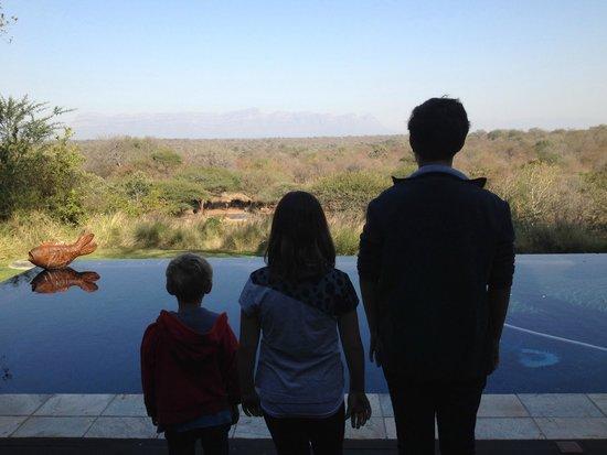 Khaya Ndlovu Manor House: Pool view