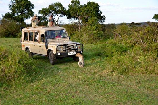 Olare Mara Kempinski Masai Mara: Game drive