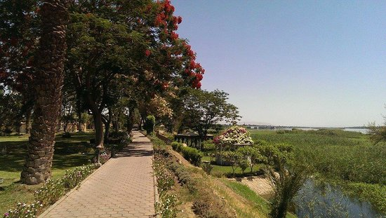 Maritim Jolie Ville Kings Island Luxor : Hotel Gardens