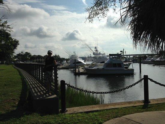 La Quinta Inn Charleston North : в двух шагах от отеля