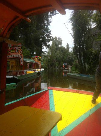 Xochimilco: Squeaking by