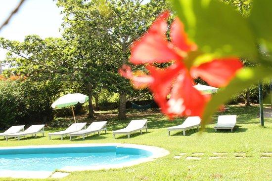 Buzios Summer Park Casas e Suites : Área externa