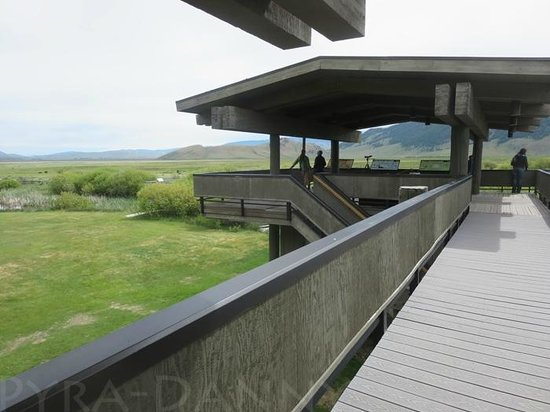 National Elk Refuge: Go out to the observation deck on 2nd floor. It overlooks the preserve and there's great views!