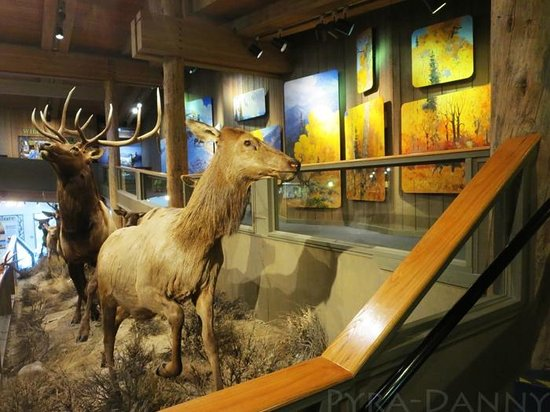 National Elk Refuge: The side of one of the grander exhibits