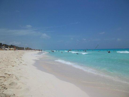Viva Wyndham Maya : Hotel Beach