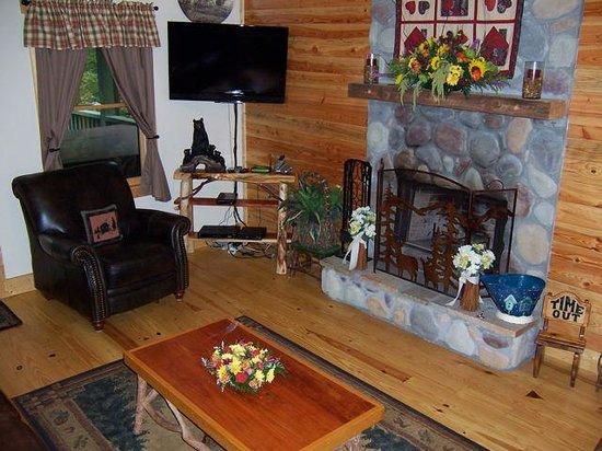 Tanglewood Cabins: Living room @ Ruhe Haus