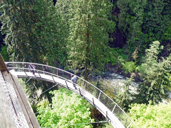 Parque y Puente colgante de Capilano: Cantilevered walkway