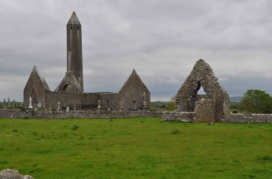 Kilmacduagh Tower: Distance view of the site