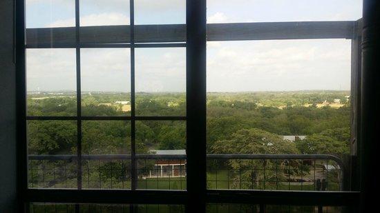 Gruene River Inn : View from Dining area