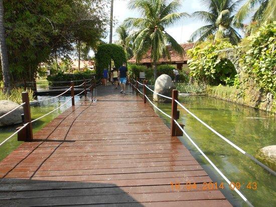 Serrambi Resort : Deck de passagem sobre mini lago