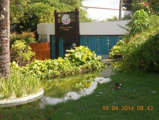 Serrambi Resort : Oficina de arte e pintura