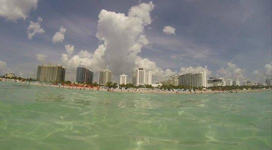 Loews Miami Beach Hotel: Vista do Mar para o Hotel