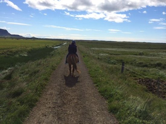 Eld Hestar Horseback Tours : Riding the trails