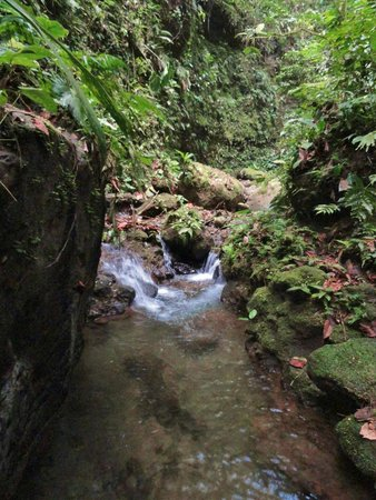 Princesa de la Luna Eco Lodge: Hiking on the property