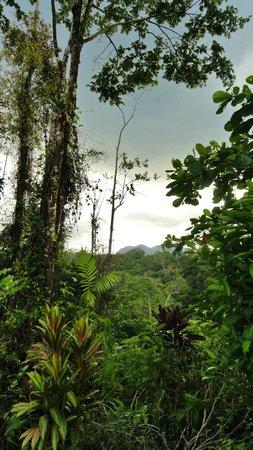 Princesa de la Luna Eco Lodge: Volcano in the distance