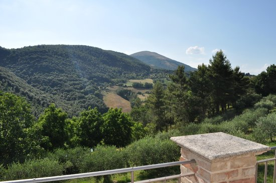 Agriturismo La Fonte: Vista dalla terrazza