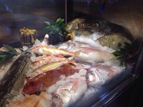 Marisqueria Nuevo Chankete: Pescados