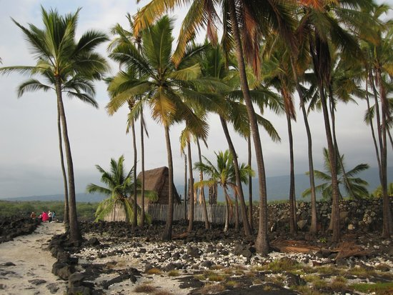 Pu'uhonua O Honaunau National Historical Park : Historic place