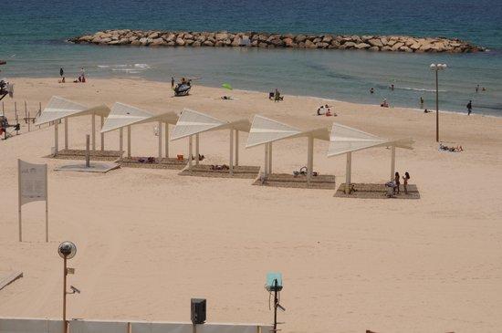 Daniel Herzliya Hotel : the beach