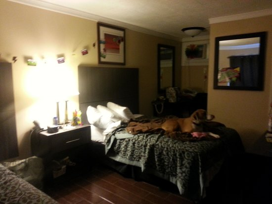 Days Inn Seaside Heights/Toms River: DOG FRIENDLY ROOM