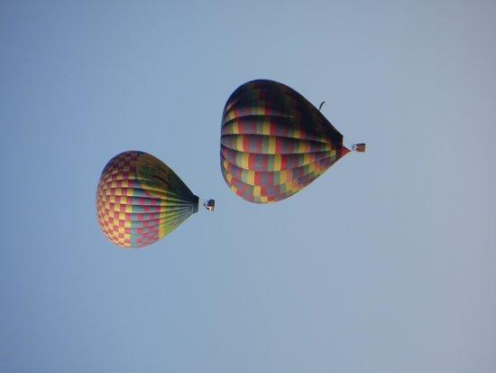 California Dreamin' Balloon Adventures : Ballons Aloft