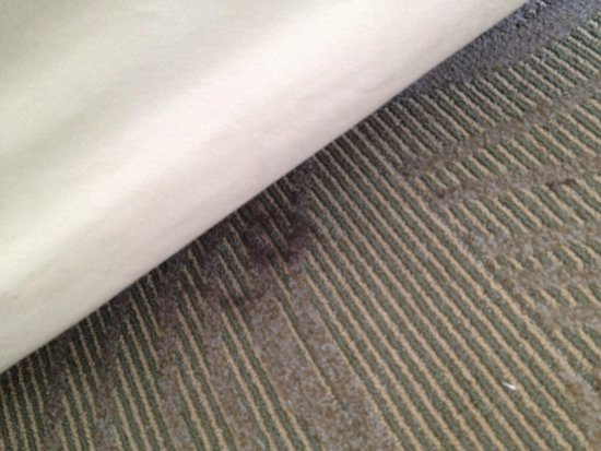 SpringHill Suites Savannah Downtown/Historic District: Stains all around beds on carpet