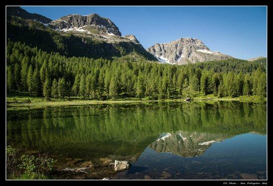 Hotel Cristallo: Il pittoresco lago di San Pellegrino a pochi passi dall'hotel.