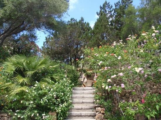 Hotel Capo D'Orso Thalasso & Spa : lovely gardens