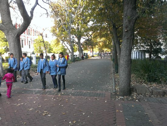 Cape Town Free Walking Tours: Near St. George's Cathedral