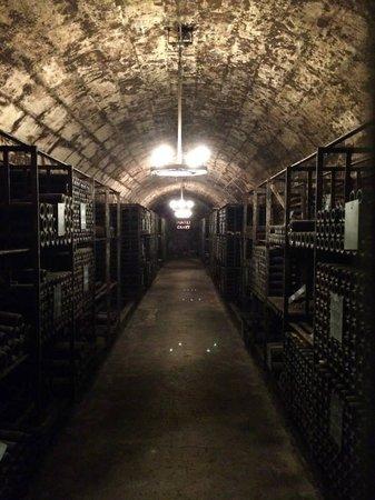 BD Tours: Wine Tours In Bordeaux : Château Pontet-Canet