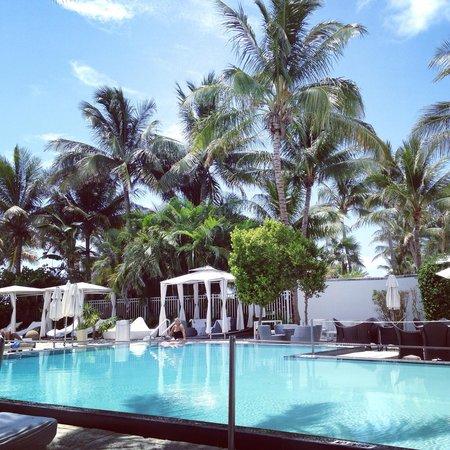 Sagamore: Pool view