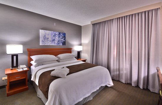 Embassy Suites by Hilton Denver Stapleton: One King Room