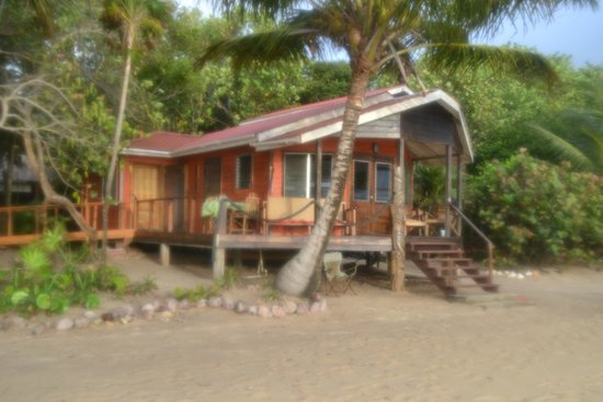 Jungle Jeanie's by the Sea : One of several bungalows located right on the beach.
