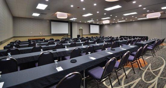 Embassy Suites by Hilton Denver Stapleton: Meeting Space