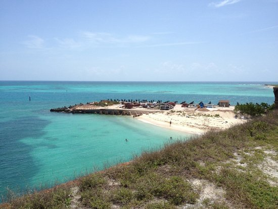 Fort Jefferson: Beach in front of the fort
