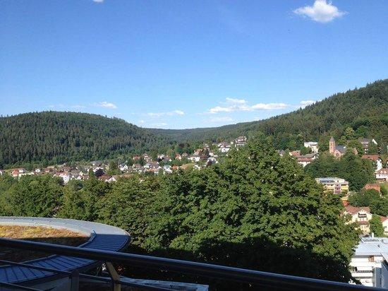 Schwarzwald Panorama: Vista do quarto