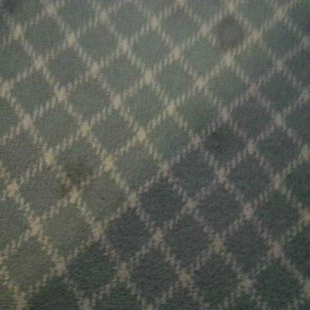 Best Western Hotel Plaza: worn out stained carpets