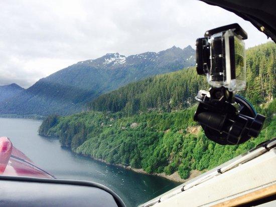 Dove Island Lodge: Flying