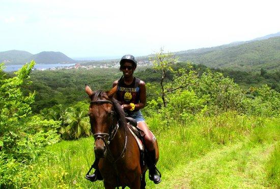 Brandy Manor Riding Center : Brandy Manor trail